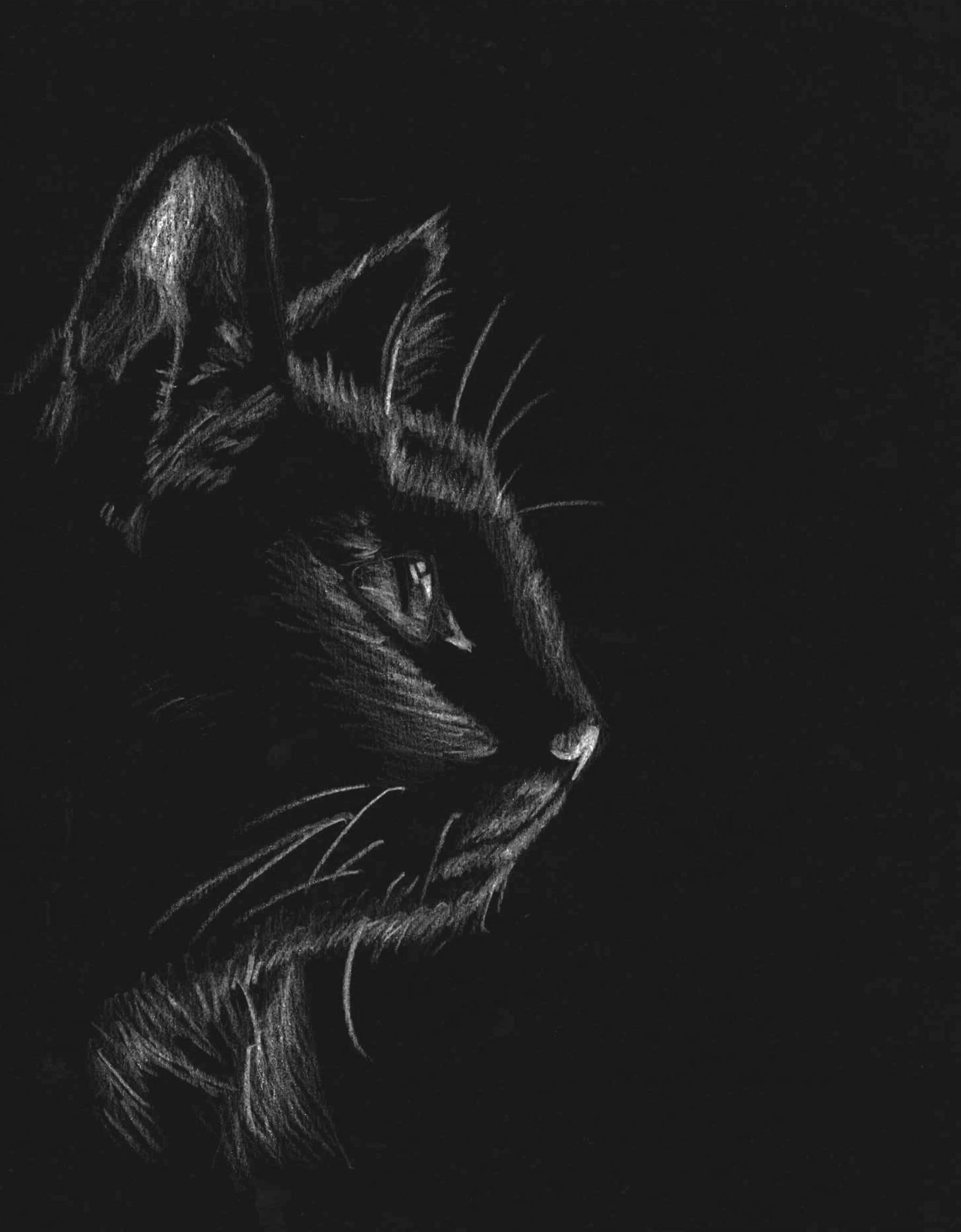 [04_Zwierzeta_Kot]